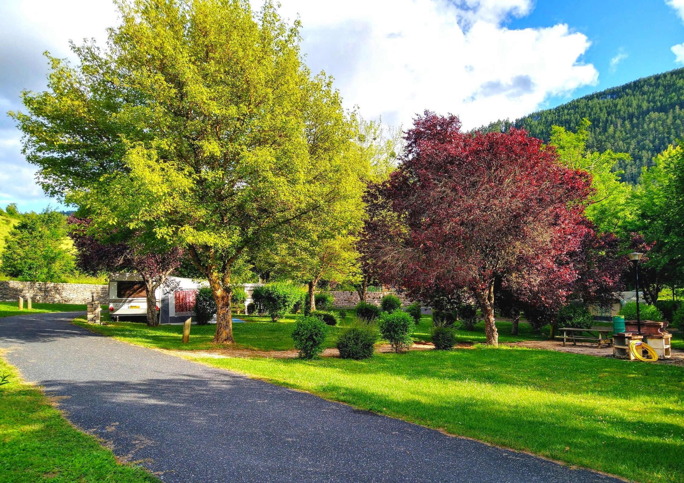 Le camping de Chanac verdoyant